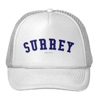 Surrey Trucker Hat