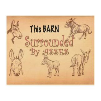 Surrounded by asses..barn sign wood wall decor