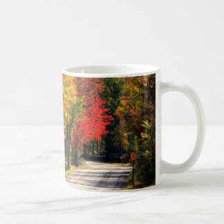 Surrounded By Fall Color Classic White Coffee Mug