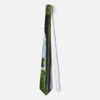 Surrounding Greenery And Water Reflection Of The S Tie