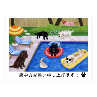Surrounding the pool, party Labradors