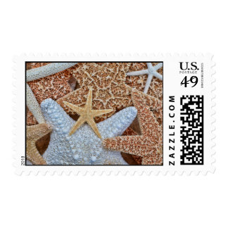Surtido colorido de estrellas de mar timbre postal
