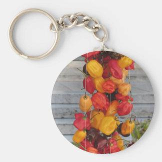 Surtido de pimientas de chiles coloridas llavero redondo tipo pin