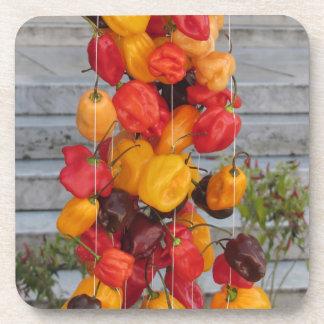 Surtido de pimientas de chiles coloridas posavasos de bebidas