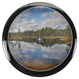 Suru Bog Põhja-Kõrvemaa Nature Reserve Estonia Aquarium Clock