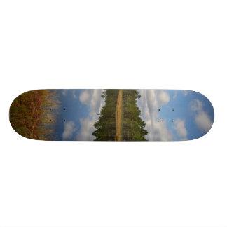 Suru Bog, Põhja-Kõrvemaa Nature Reserve, Estonia Skate Board Deck