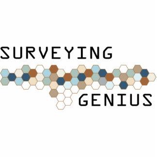 Surveying Genius Cut Out