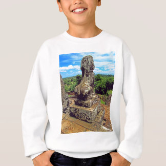 Surveyng His Domain Sweatshirt