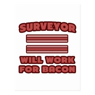 Surveyor Will Work For Bacon Postcards