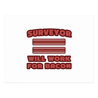 Surveyor Will Work For Bacon Post Card