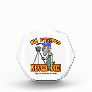 Surveyors Acrylic Award