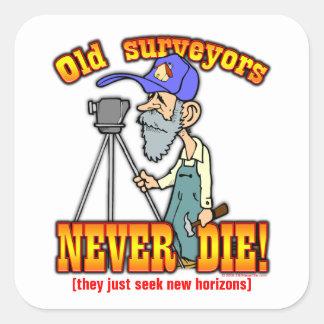 Surveyors Square Sticker