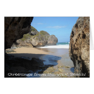 Survival Beach Note Cards