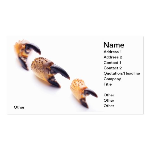 Survival Double-Sided Standard Business Cards (Pack Of 100)