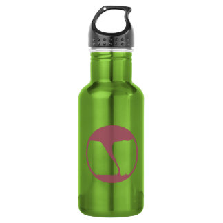 Survived dangerous weather in the name of science water bottle