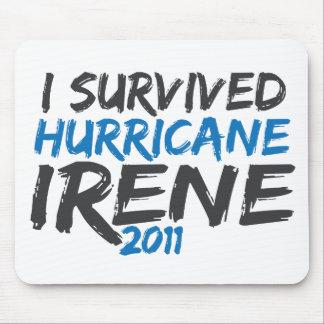 Survived Hurricane Irene Mousepad