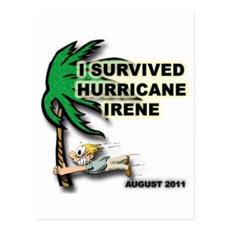 Survived Hurricane Irene Postcard