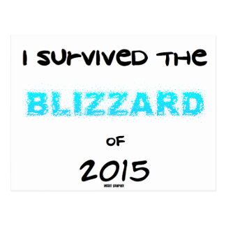 Survived the Blizzard 2015 Postcard