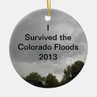 Survived the Floods Ornament