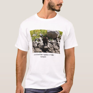 Survived the rapids in Hells Canyon T-Shirt