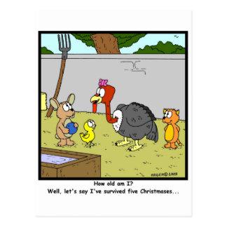 Surviving Christmas! Postcard