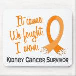 Survivor 11 Kidney Cancer Mousepads