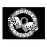 Survivor 14 Brain Cancer Post Card