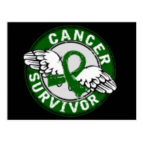 Survivor 14 Liver Cancer Postcard