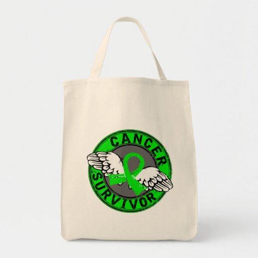 Survivor 14 Non-Hodgkin's Lymphoma Canvas Bag