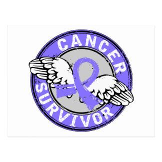 Survivor 14 Stomach Cancer Postcard