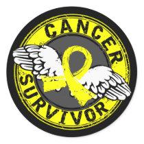 Survivor 14 Testicular Cancer Classic Round Sticker