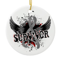 Survivor 16 Brain Tumor Ceramic Ornament
