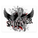 Survivor 16 Brain Tumor Postcard