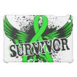 Survivor 16 Lymphoma Cover For The iPad Mini