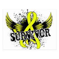 Survivor 16 Testicular Cancer Postcard