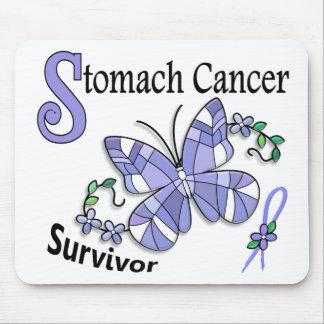 Survivor 6 Stomach Cancer Mousepads