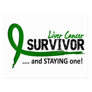 Survivor 8 Liver Cancer Postcard