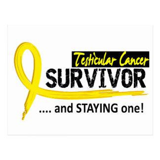 Survivor 8 Testicular Cancer Postcard