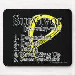 Survivor Definition - Testicular Cancer Mouse Pads