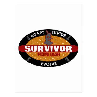 Survivor Petri Dish Postcard