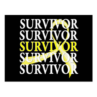 Survivor Whimsical Collage Bladder Cancer Postcards
