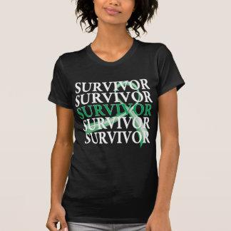 Survivor Whimsical Collage Liver Cancer T-Shirt