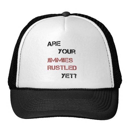 ¿Sus barretas se crujen todavía? Gorros Bordados