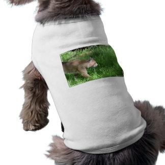 Sus camisetas sin mangas acanaladas del perrito de ropa macota