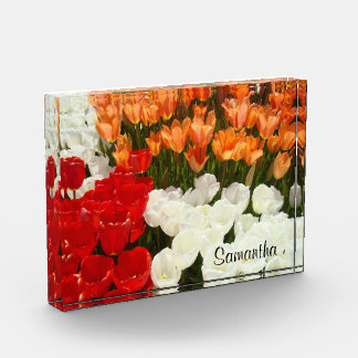 Sus flores personalizadas nombre del tulipán de la