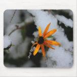 susan observada negro en la primera nieve tapetes de ratones