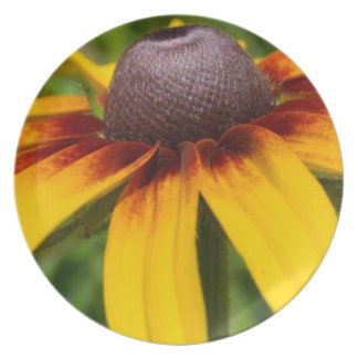 Susan observada negro florece la placa plato