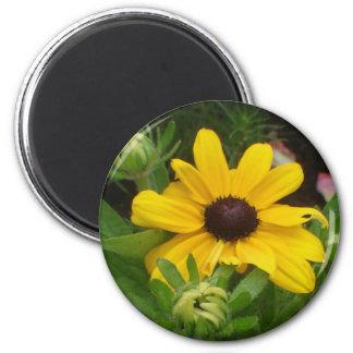 Susan observada negro imán redondo 5 cm