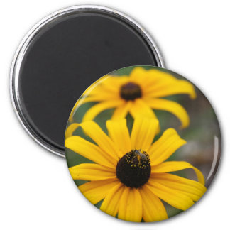 Susan y abeja Negro-Observadas Imán Redondo 5 Cm