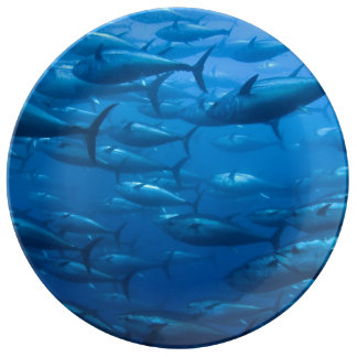 Sushi azul de la aleta platos de cerámica